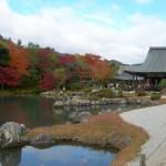 Kyoto Sagano
